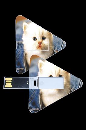 Cute Cat Triangle Shape Pen Drive
