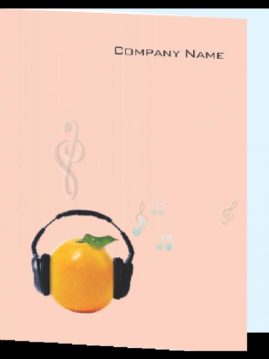 Harmony Music Industry Folder