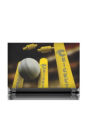 Bowled Cricket Laptop Skin