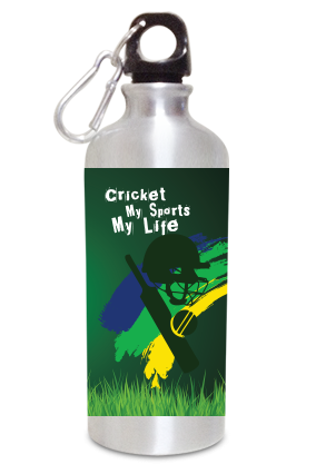 Cricket 600ml Silver Sipper
