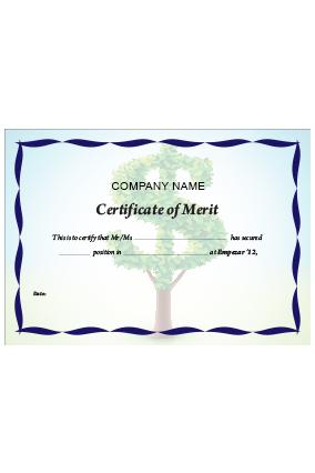 Customized Certificate of Merit