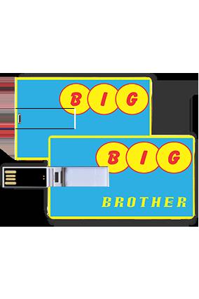 Big Brother Credit Card Pen Drives