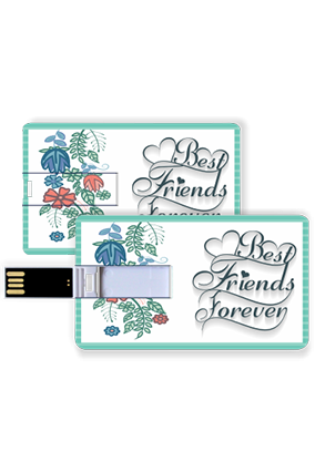 Best Friends Credit Card Pen Drive
