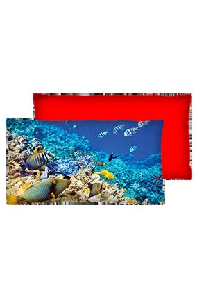 Under Sea World Velvet Rectangular Red Cushion
