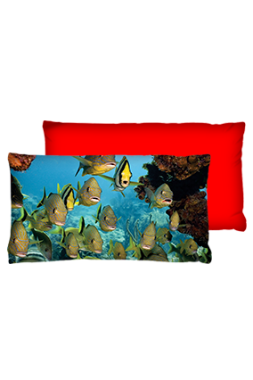 Aquarium Velvet Rectangular Red Cushion