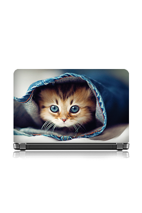 Cute Kitten Laptop Skin