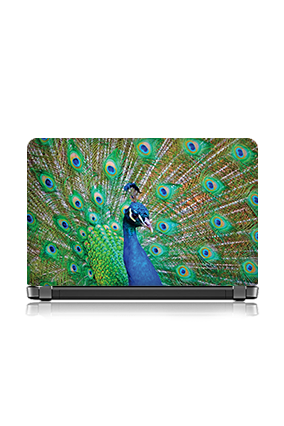 Custom Beautiful Peacock Themed Laptop Skin