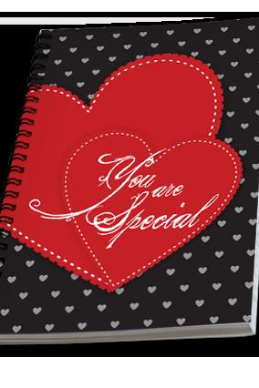 Effit Love Stitch Valentine Day Notebook