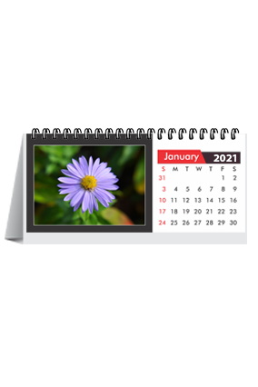 Premium White Desk Photo Calendar(8.2 x 3.7 Inches) - 12 Leaves