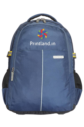Aristocrat Maestro 30 L Laptop Backpack (Blue)