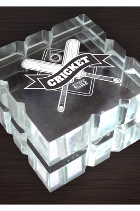 Cricket Paperweight