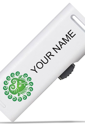 Green Aries Pen Drive