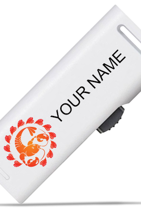 Orange Cancer Pen Drive