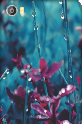 Customized Silicon - Lava Iris X8 Gardenic Mobile Cover