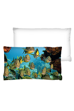Aquarium Rectangular White Cushion