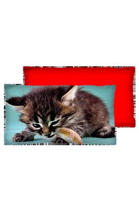 Wild Cat Background Velvet Rectangular Red Cushion