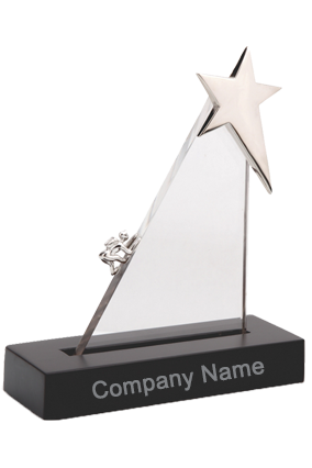 Business Premium Metal Trophy (TRO - 2253)